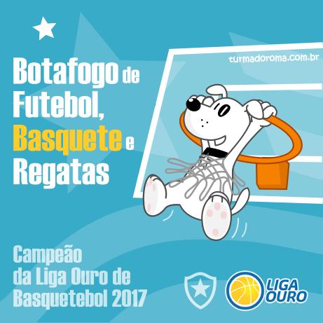 Basquete Campeão Liga Ouro 2017