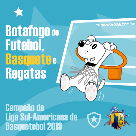 Campeao Liga Sul-Americana 2019
